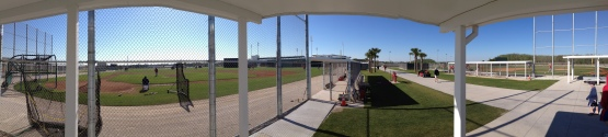 Another view of Fenway South.